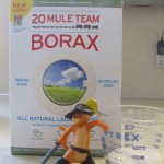 Borax Ant Killer Step 2